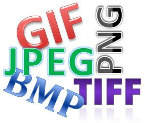 what is a gif?, raster vs. vector, what is a jpeg?, what is a png?